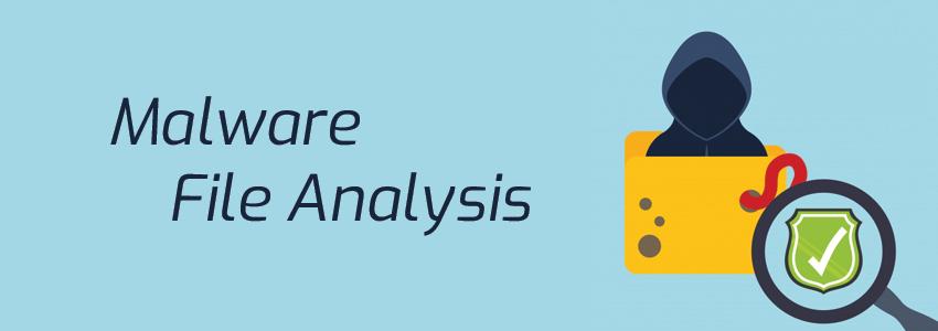 Malware File Analysis