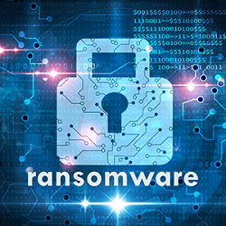 Ransomware and the law